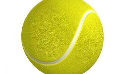 Boys' Tennis Mid-Season Update