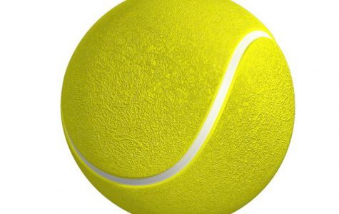 Boys' Tennis Mid-Season Update