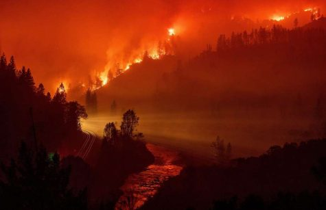 Climate Change and Last Year's Wildfires in California