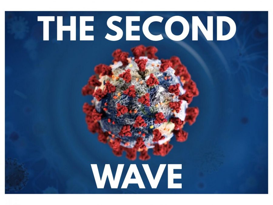 The Prospect of a Second COVID-19 Wave