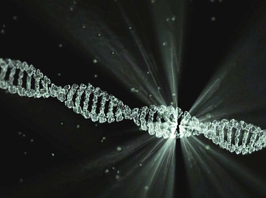 CRISPR+and+Women%27s+Representation+in+STEM%3A+2020+Chemistry+Nobel+Prize