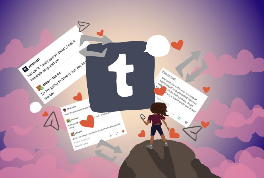 Wild, Wacky, and Wonderful: The Creation of Tumblr Culture